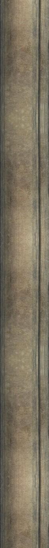 I45BRAQUE BRONZE Texture