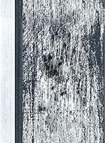 50171 NOIR Texture